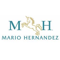 Mario Hernandez Venezuela, C.A